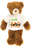 08WALKcharity_bear